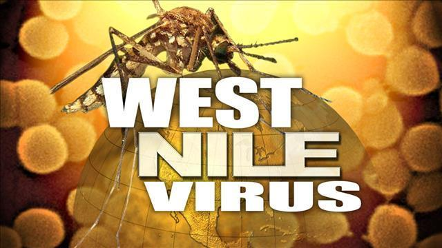 Sanilac County blood donor tests positive for West Nile virus