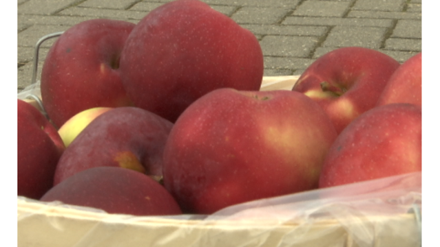 Michigan apple orchard owners to retire after 40 years