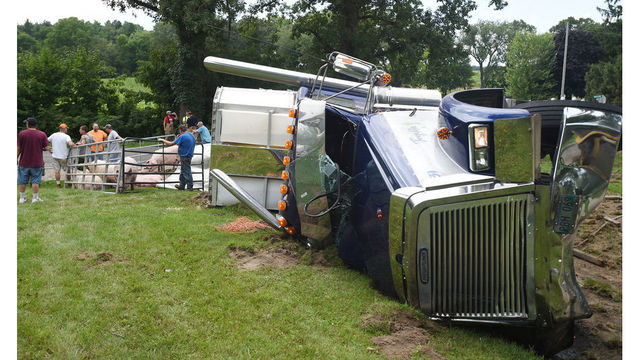 Woman injured, pigs killed in car-truck crash in Jackson Co.